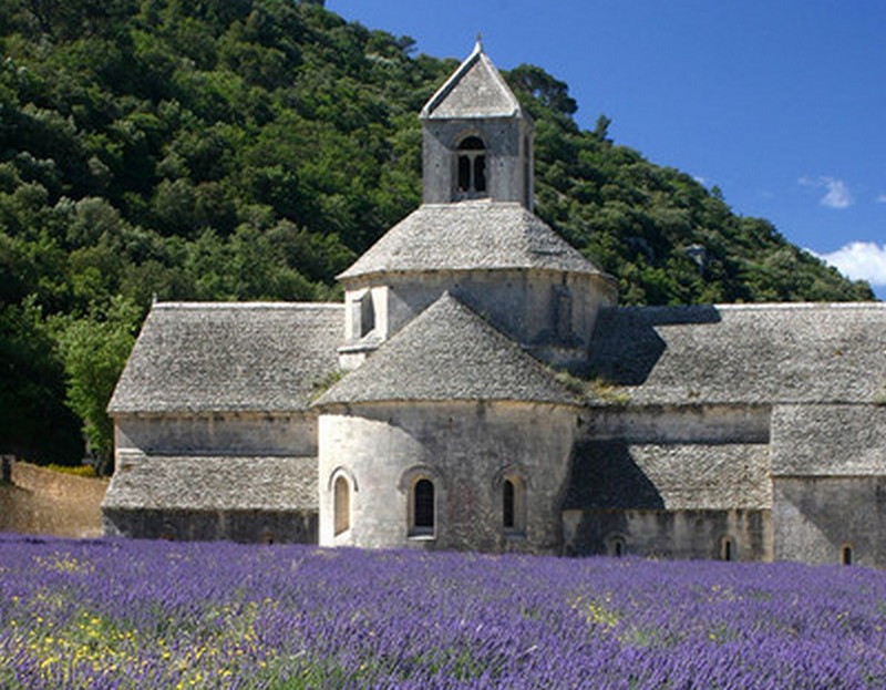 Provence - the home of lavender farming...