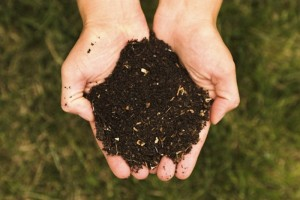 How to Make Your Own High Quality Compost