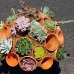 DIY clay pot succulent sphere