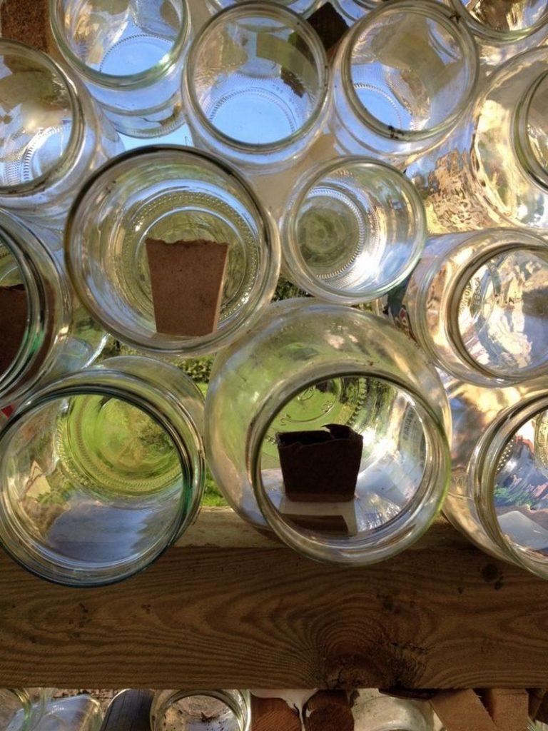 Glass Jar Greenhouse The Garden