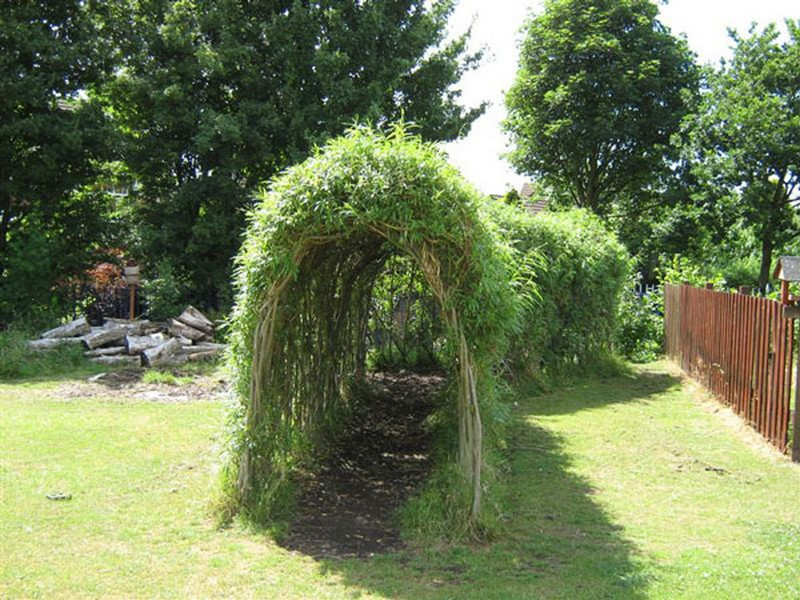 Living outdoor willow structures you can grow in your backyard the garden - Tall trees for small spaces style ...