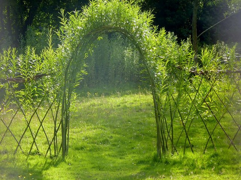 Living Outdoor Willow Structures You Can Grow In Your
