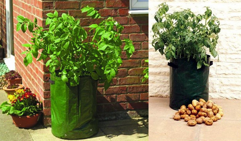 Potato tubs are designed to fit in the smallest of spaces...