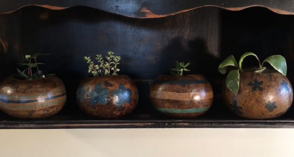 These functional gourd planters are inexpensive and easy to make.