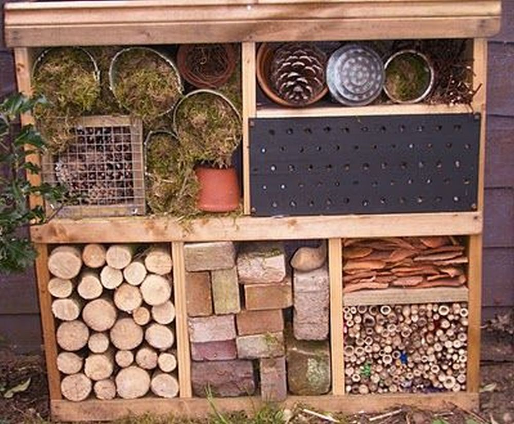 How to Build a Garden Bug Hotel