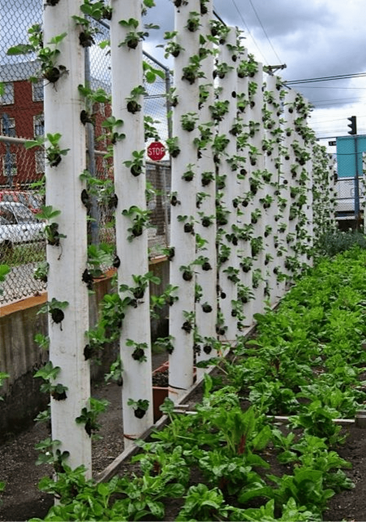 How To Build A Strawberry Tower The Garden