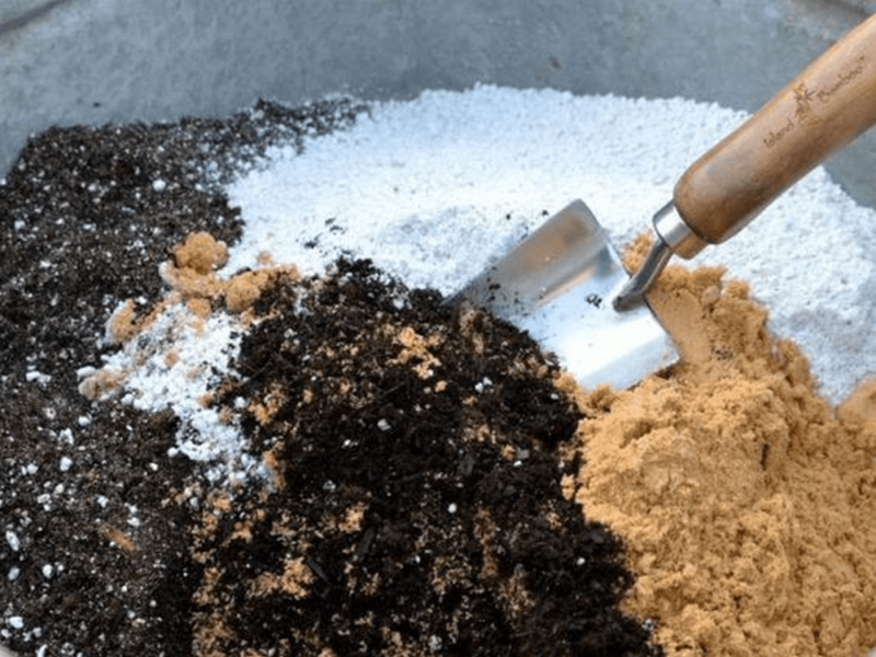 For your basic potting mix, use 1-part perlite and 1-part vermiculite for every 6 parts of peat moss.