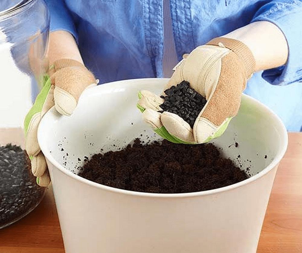potting soil coupons 2019