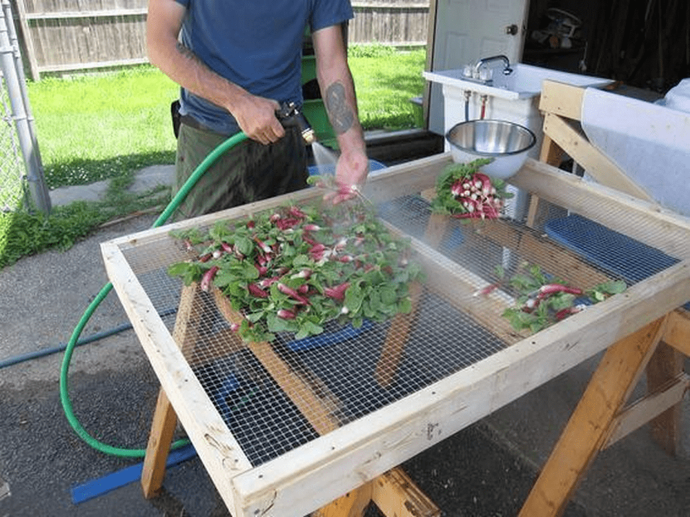 A veggie washing station will definitely make harvest season a whole lot easier.