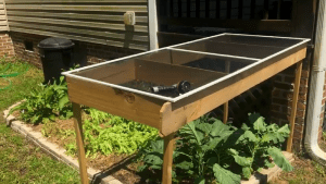 DIY Veggie Washing Station