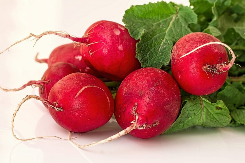 Did you know that radish plants also act as insect repellents?