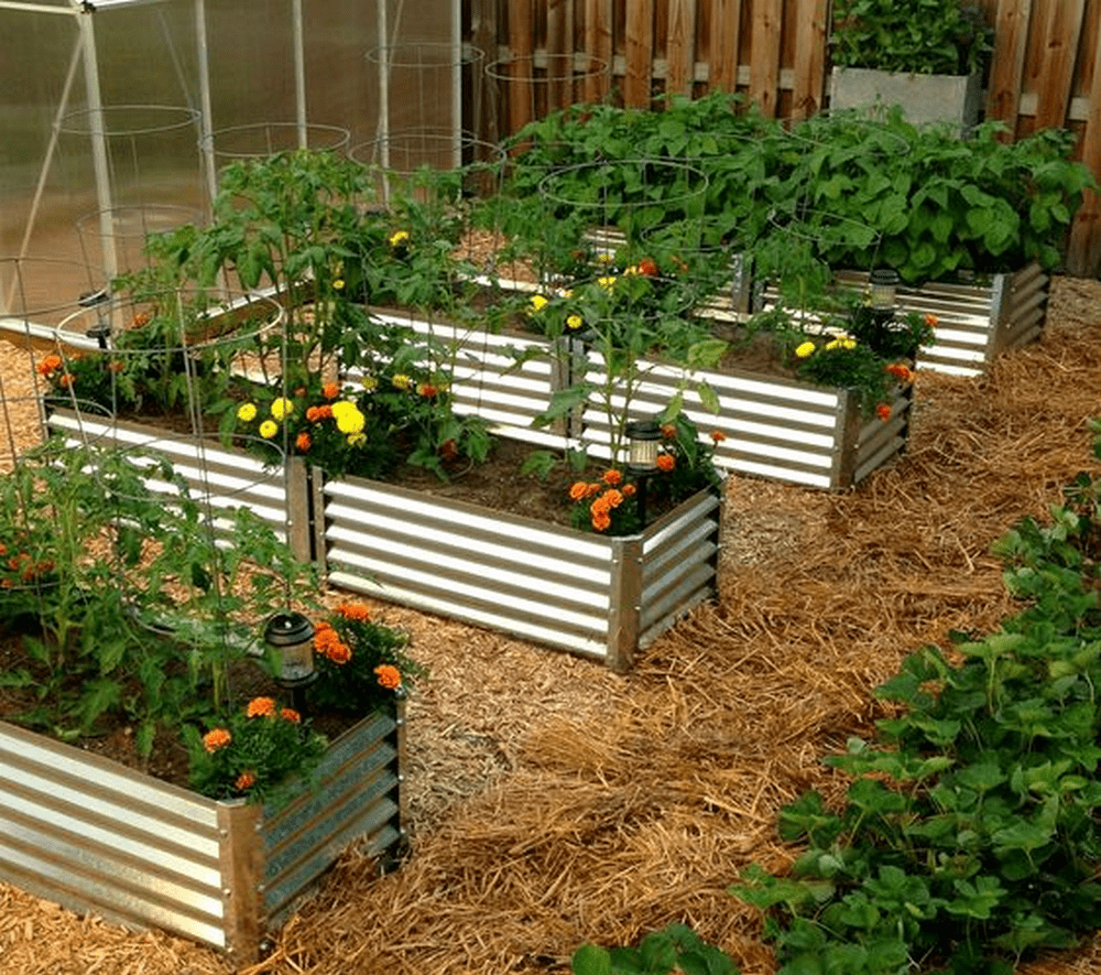 Build Your Own Corrugated Metal Raised Bed