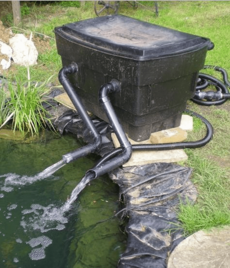DIY Fish Pond Filter – The garden!