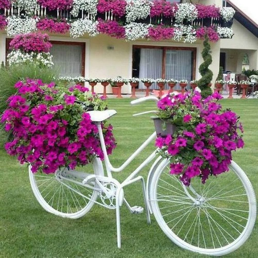 How to Make a Bicycle Planter