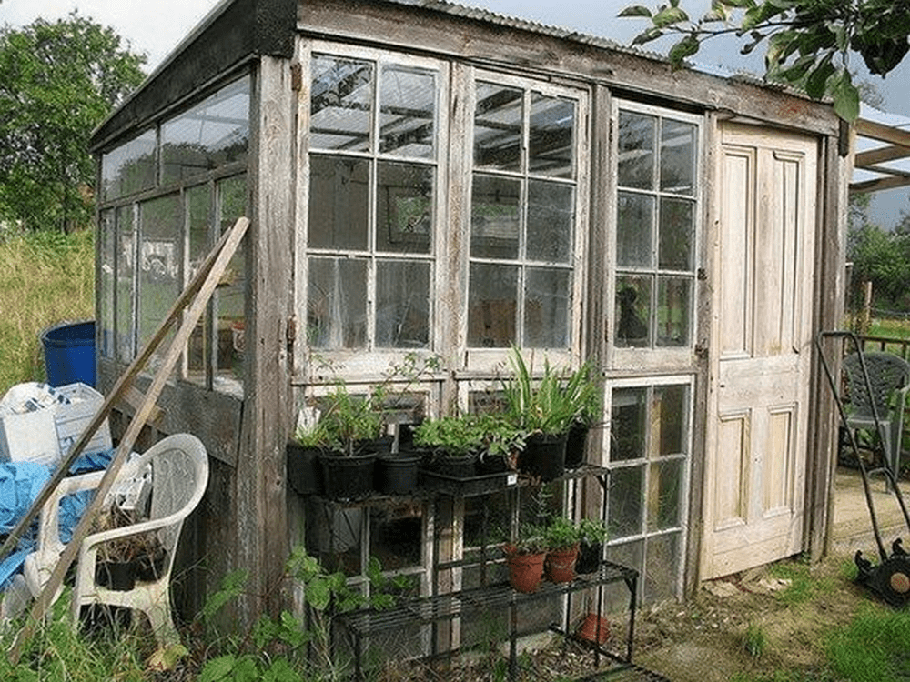 How to Turn Old Windows Into a Greenhouse