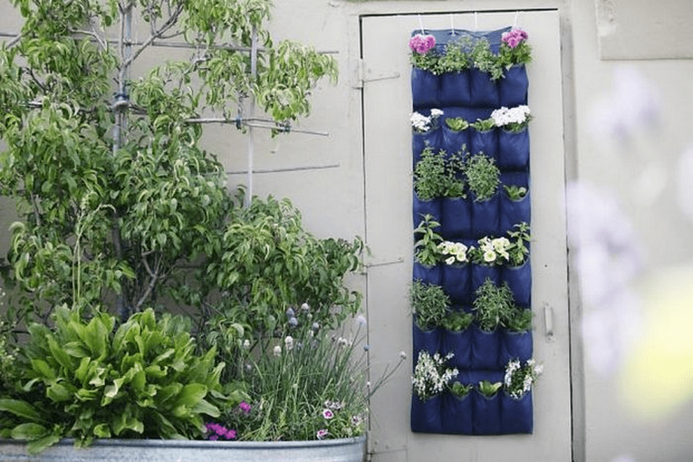 Hanging shoe organizers are versatile pieces that can go from shoe storage to vertical gardens!