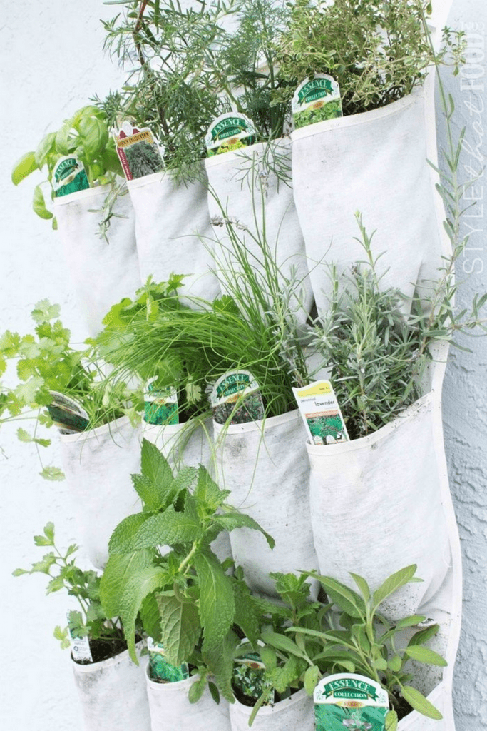 How to Make A Hanging Garden Using Shoe Organizers