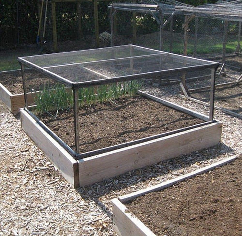 PVC Framed Garden Box Enclosures - Of Mice and Mountain ... |Vegetable Garden Screen