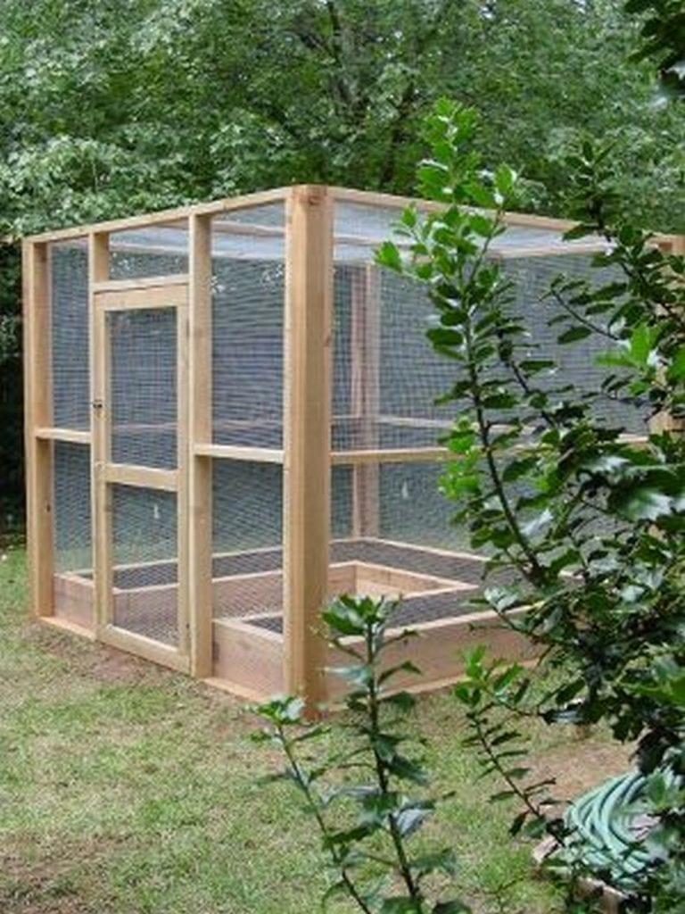 Make your Own Raised Garden Bed with Screen | The garden!