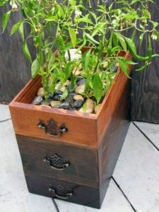 How to Make a Self-Watering Planter from a Dresser Drawer