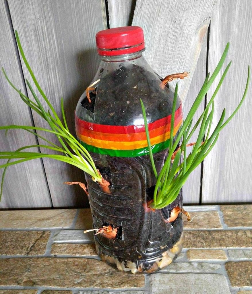 This project is simple, easy, and inexpensive - all you need is a large plastic bottle.