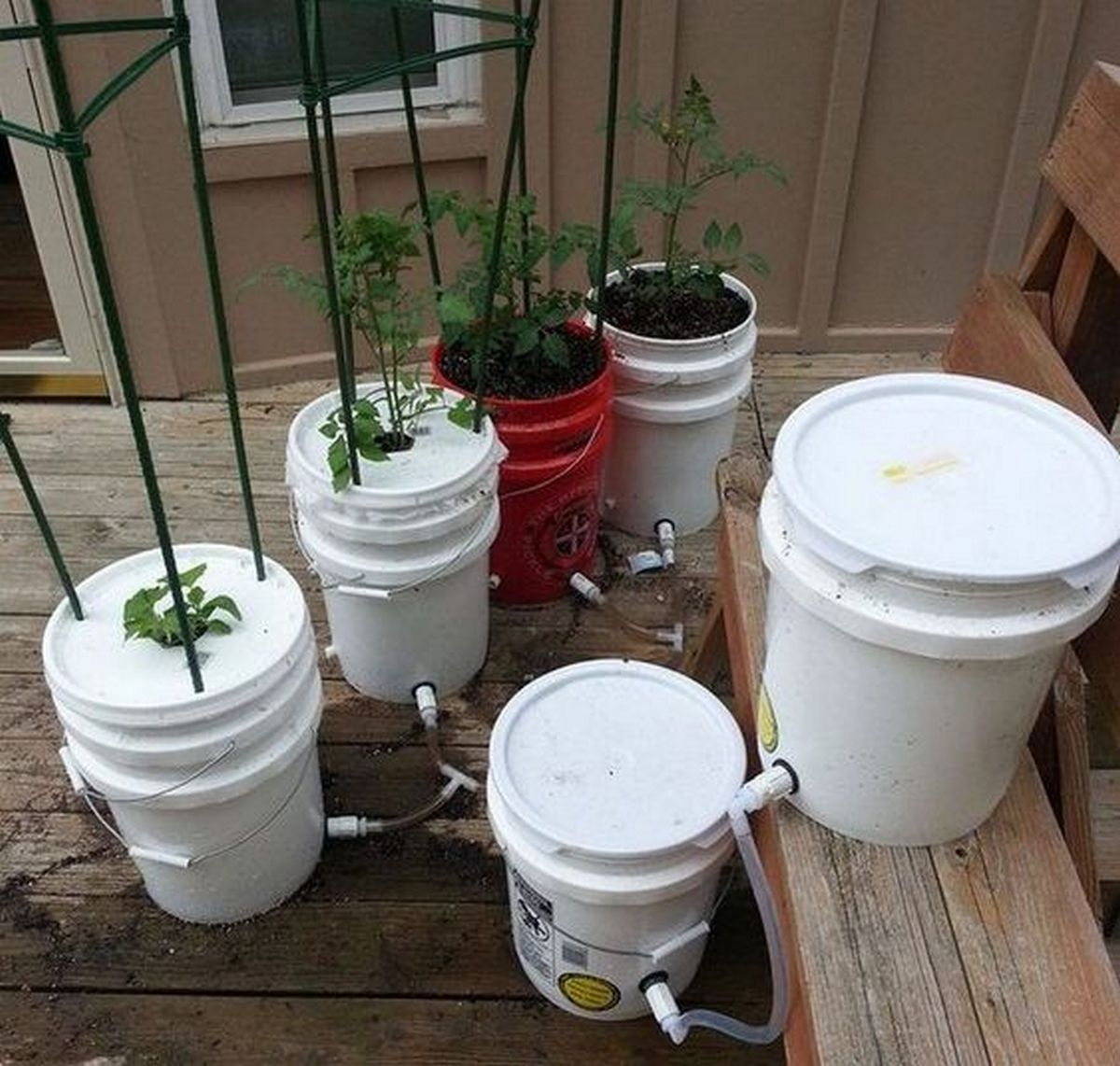 DIY 5 Gallon Self-Watering Planter | The garden!