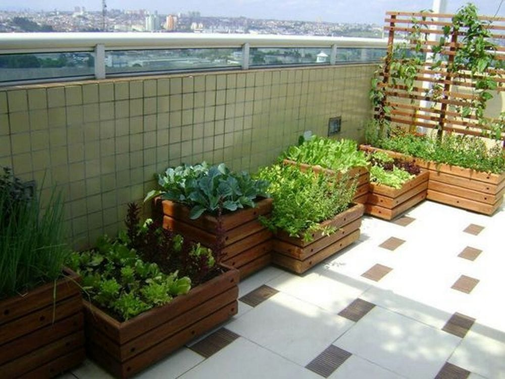 No garden space? No problem! Use your balcony instead.
