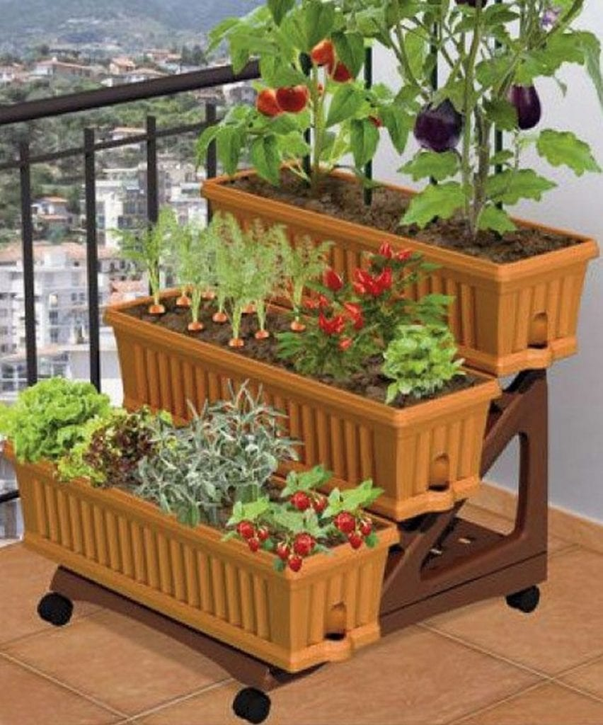 30 Amazing Ideas For Growing A Vegetable Garden In Your: How To Grow A Balcony Vegetable Garden