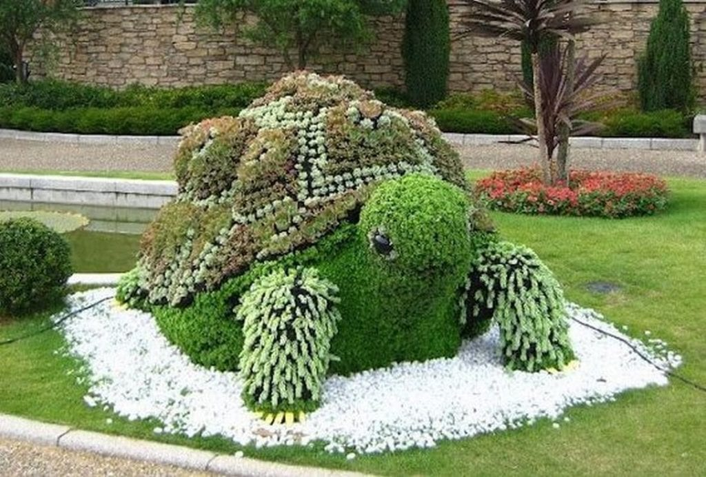 A turtle topiary will be an adorable addition to your garden.