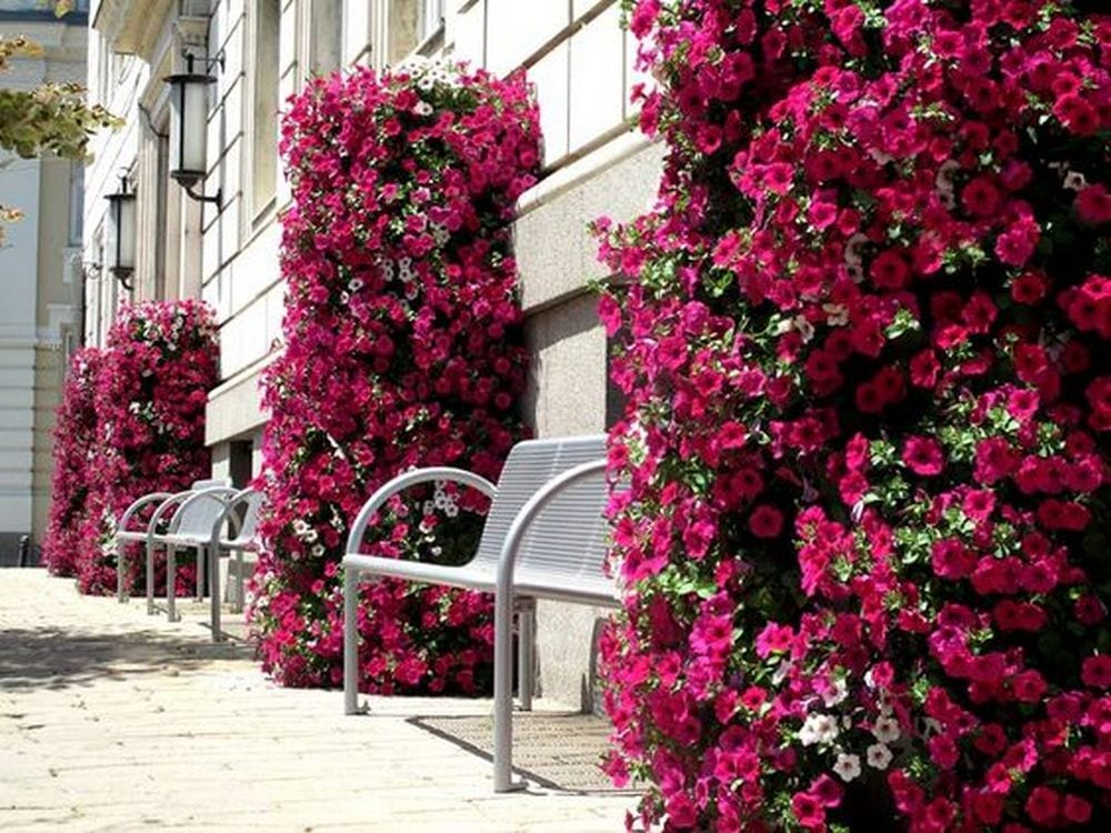 These flower towers are perfect for those with small yards.