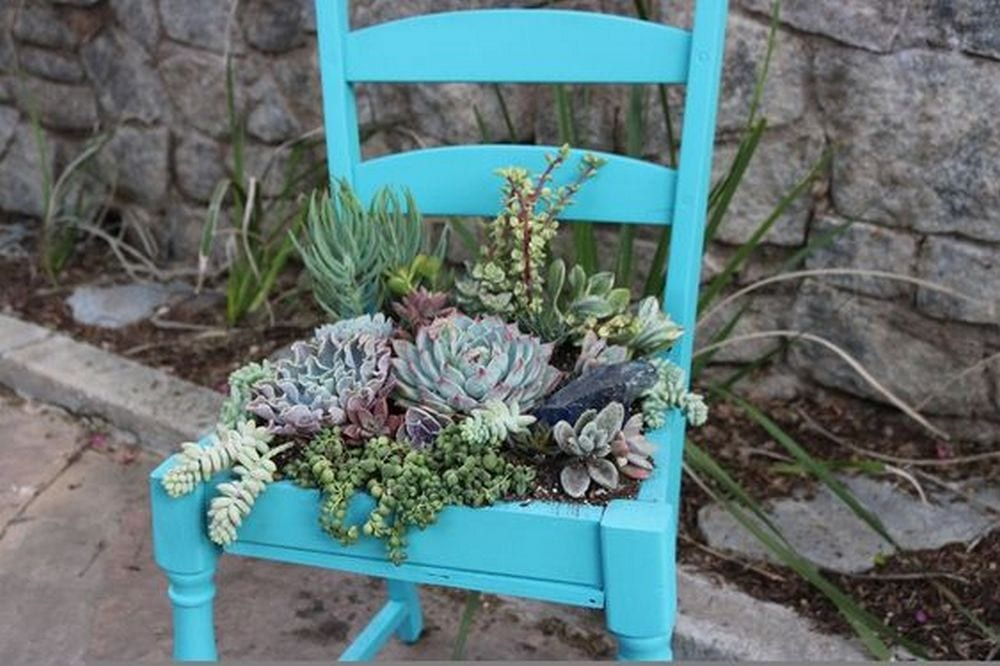 Got an old chair that's ready for new life? Make a succulent chair!