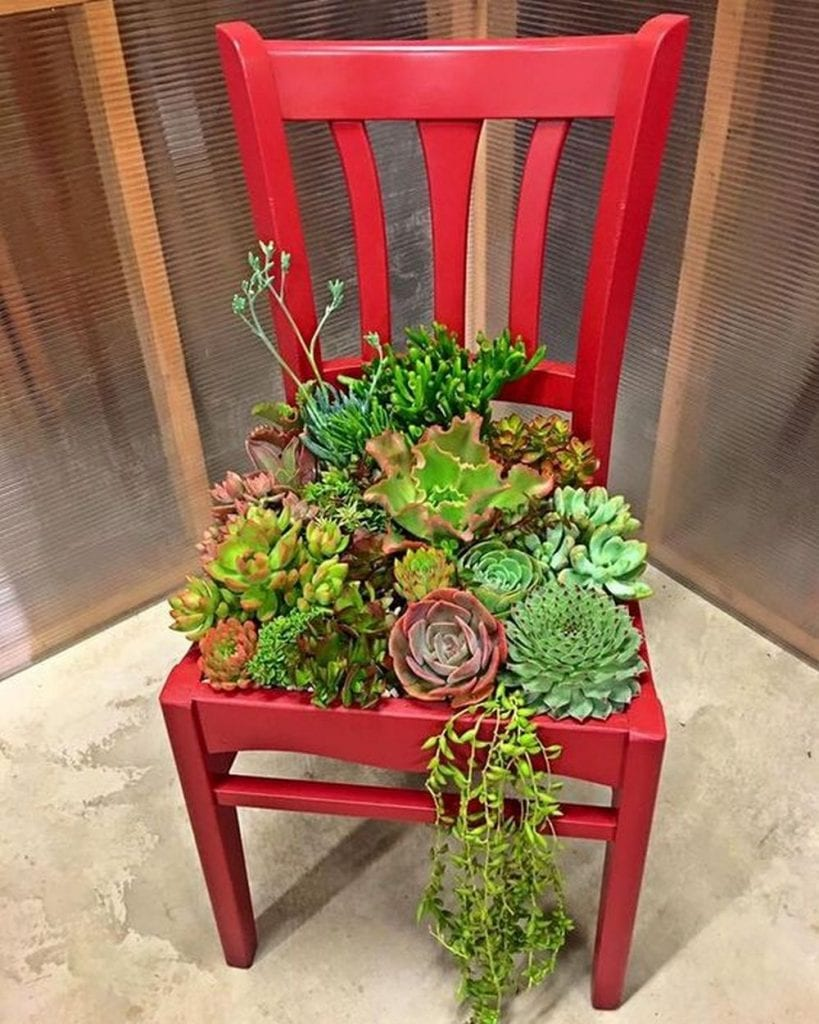DIY Succulent Chair