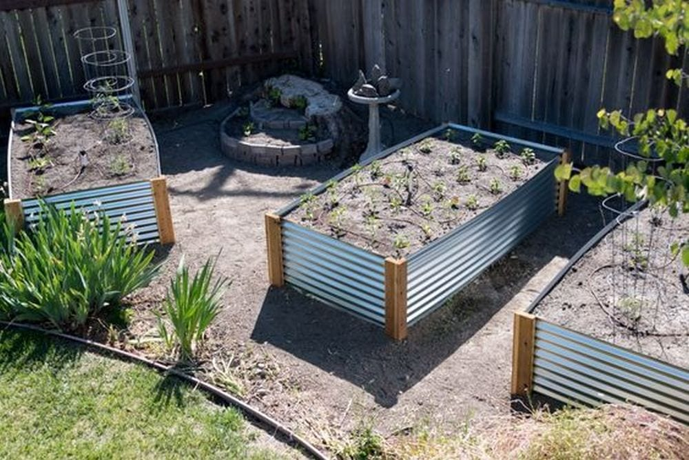 These roofing sheet metal raised garden beds are inexpensive than wood.