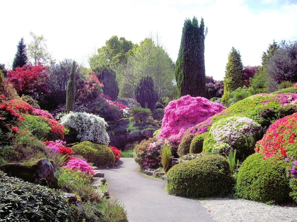 Gardens have always been a great source of joy for people.