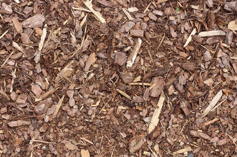 Mulch for your flowerbed.