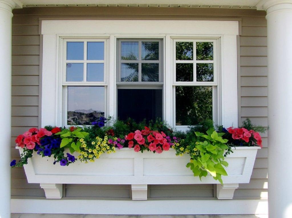 Window Box Garden Ideas for Your Home