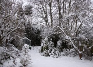 Don't Fret, Snow is Good for Your Garden