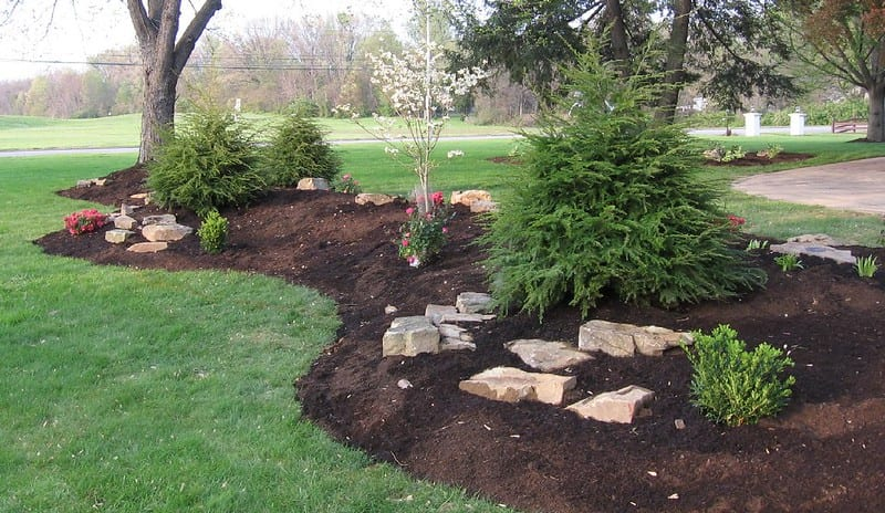 One easy way to improve drainage is to build a berm directly on top of the wet soil.