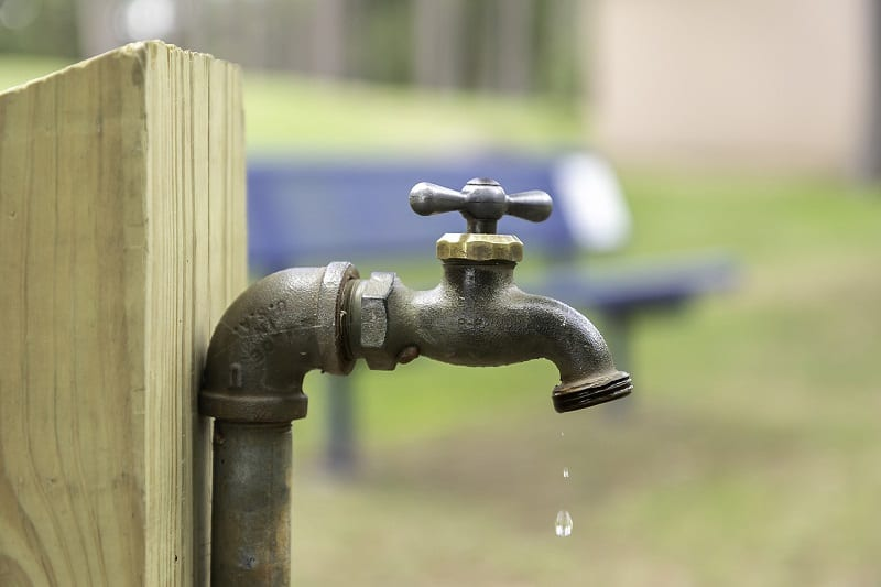 In many places, gardeners have to contend with severe water restrictions and increasing spells of drought.