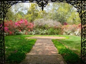 How to Create Your Own Secret Garden