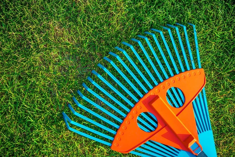 Your rake will be handy for cleaning up grass clippings and for raking the lawn in spring and fall.