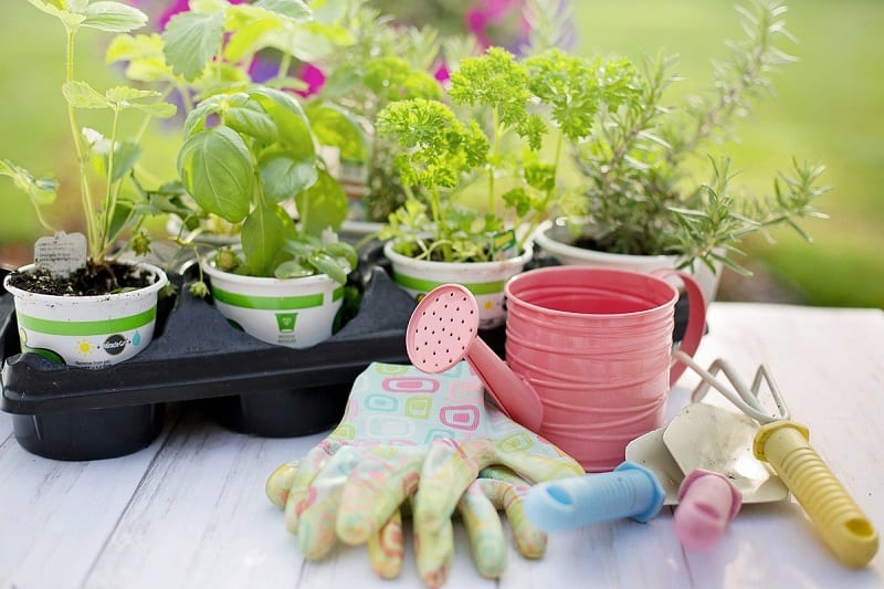 If you're among the many who have decided to start a backyard garden this year, you'll need a small cache of tools to break ground.