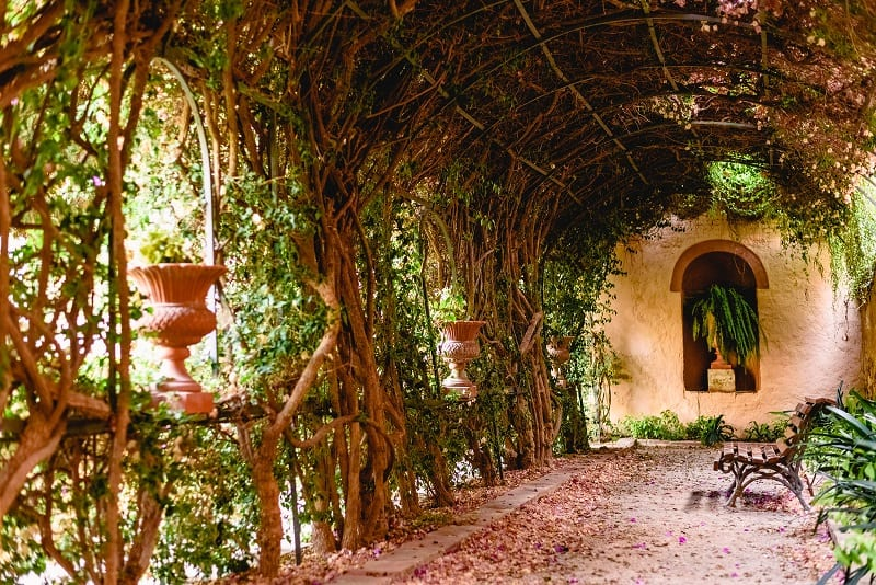 If you have space, a pergola draped with climbing plants would be an excellent touch.