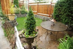 How to Deal with Standing Water in Your Garden