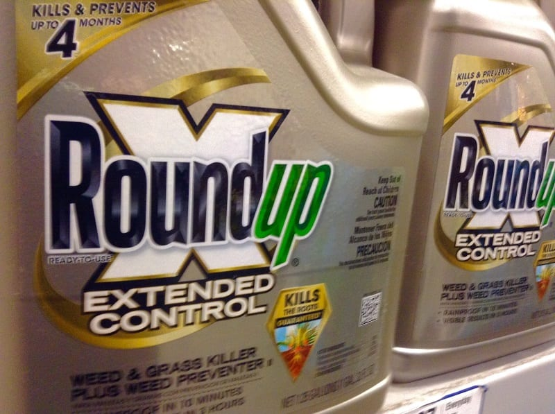 A recent study has linked glyphosate - the active ingredient in the weed-killer, Roundup - to disease and death in bees.