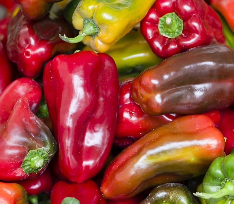 You will need to start peppers indoors or under cover in most climates.