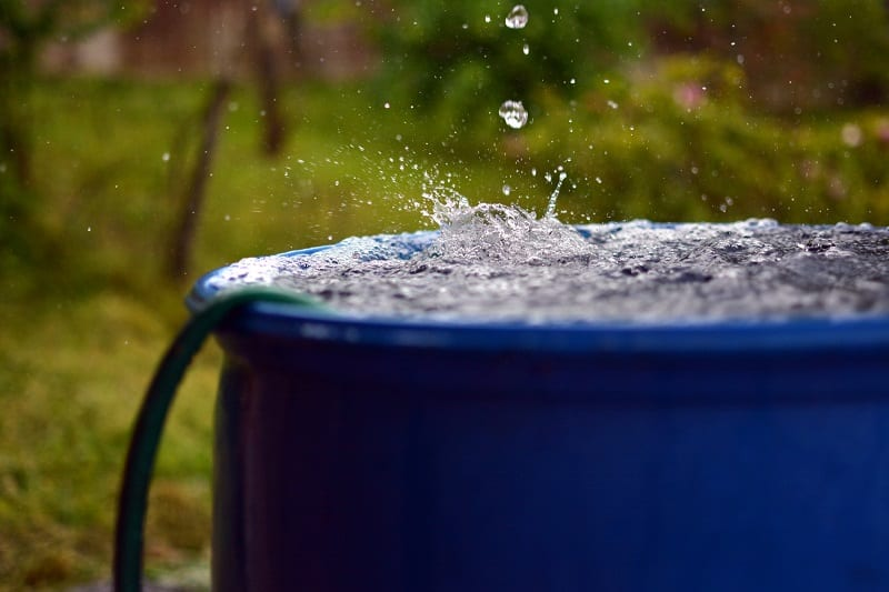 There are a number of ways to reduce water consumption in your garden.