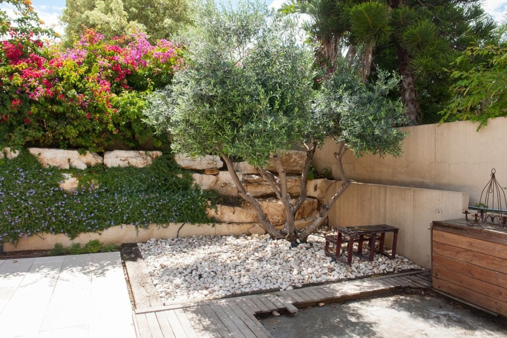 Paradise in Your Backyard: Garden Design Tips from the Mediterranean