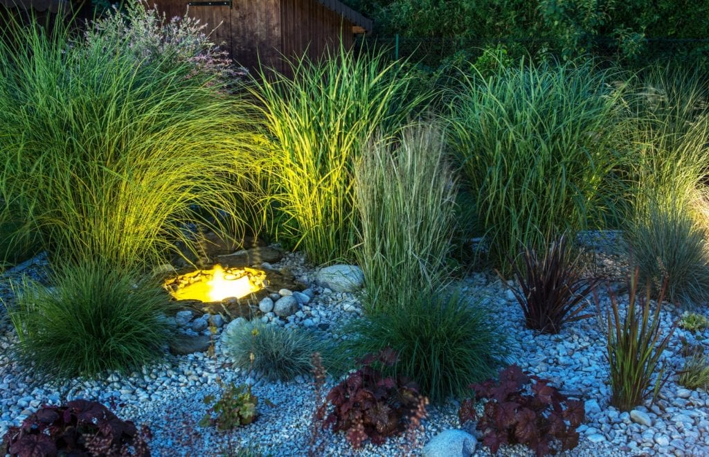 Pale flowers and light-colored hardscaping stand out more prominently against a dark background of foliage.