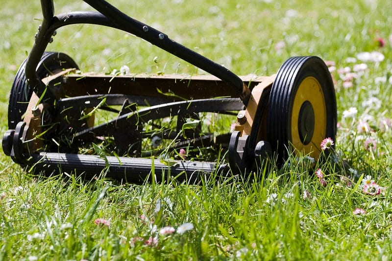 Rushing does not use gas-powered blowers and mowers. Instead, he uses simple tools like brooms and hand mowers.